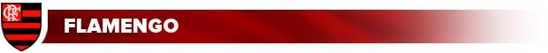Header-Materia_Flamengo (Foto: infoesporte)