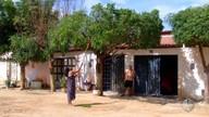 Em Mossoró, período de chuva preocupa moradores com queda de galhos e árvores