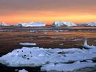 Cinco perguntas-chave sobre santuários naturais na Antártica