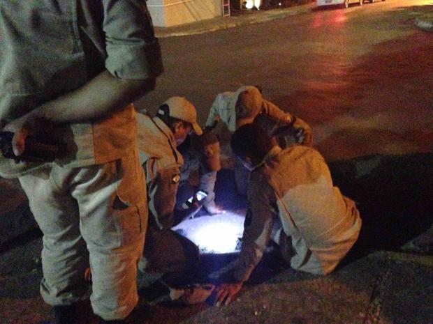 Animal demorou 40 minutos para ser resgatado (Foto: Daniela Boaventura Daubian/ Arquivo pessoal)
