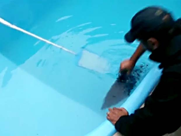 Policial retira computador jogado na piscina por suspeito de fraude no DF (Foto: TV Globo/Reprodução)