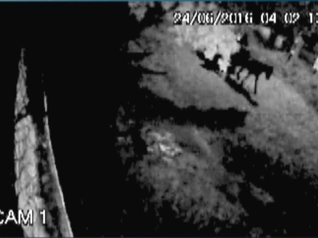 Dupla fugiu em carroça com material roubado de restaurante em João Pessoa (Foto: Reprodução/ TV Cabo Branco)