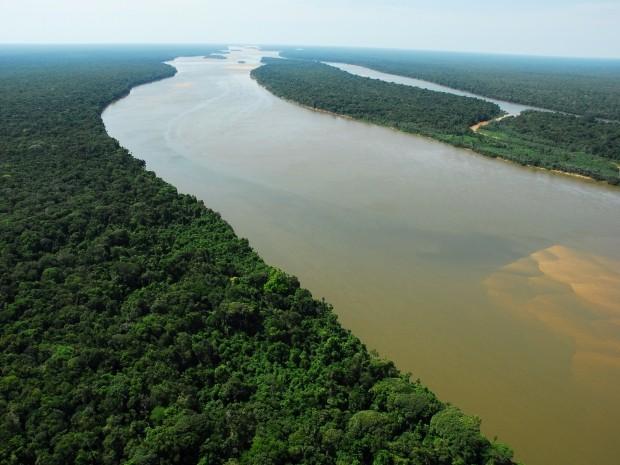Pesquisadores exploram mudanças de 6 mil anos na fauna da Amazônia (Foto: Fabio Rubinato)