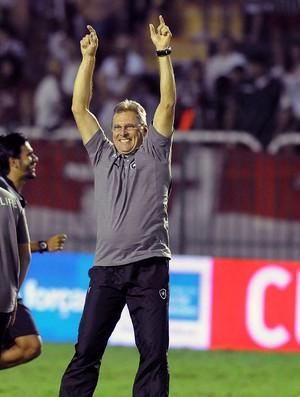 Oswaldo de Oliveira Botafogo campeão carioca 2013 (Foto: André Durão / Globoesporte.com)