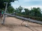 Agricultor morre eletrocutado na BA após queda de postes; mulher escapa