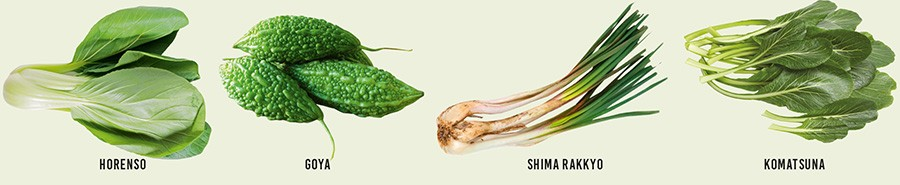 Os vegetais típicos de Okinawa são ricos em vitaminas, ajudam na digestão e aceleram a queima de gordura (Foto: Reprodução)