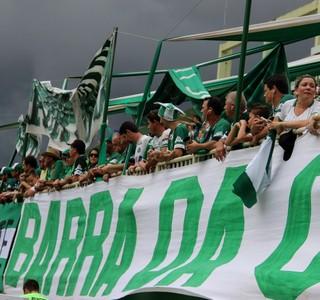 Chapecoense torcida (Foto: Gilberto Pace Thomaz/Chapecoense)