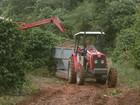 Chuva interrompe colheita de café e gera prejuízos a produtores e famílias