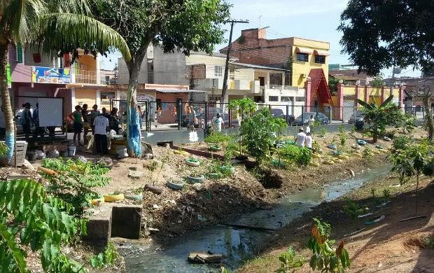 'Consciência Limpa' promove limpeza de igarapés em Manaus (Foto: Katiúscia Monteiro/ Rede Amazônica)