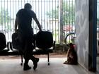 No AP, vira-lata resgatada por agentes ajuda na segurança de penitenciária