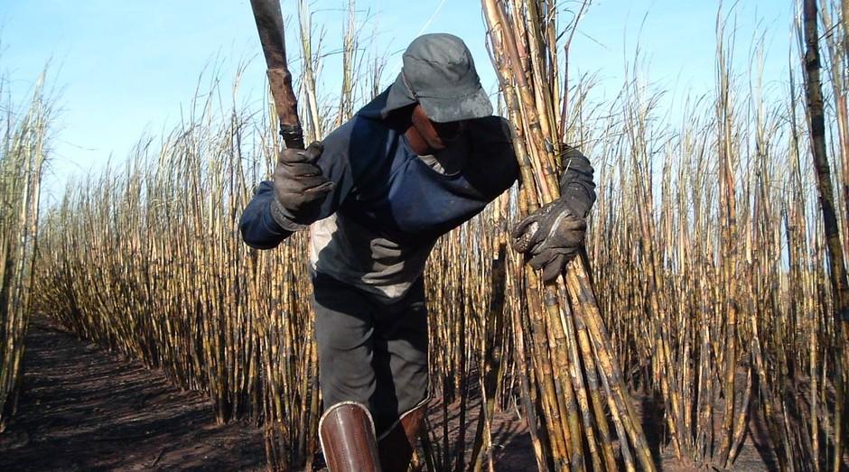 Trabalhador de lavoura: há trabalho análogo à escravidão em diversos pontos do país (Foto: Wikicommons)