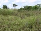 Assistência técnica rural está em crise na Bahia