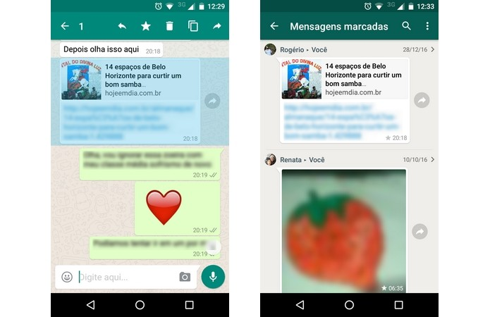 Mensagens favoritas no WhatsApp (Foto: Reprodução/Raquel Freire)