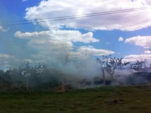 São Carlos também registrou incêndio na Rodovia Washington Luís (Foto: Indianara Campos/ Arquivo Pessoal)