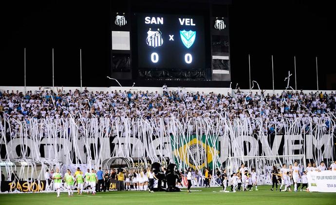 Torcida Santos x Velez (Foto: Marcos Ribolli / Globoesporte.com)