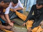 Em RR, 'bacalhau da Amazônia' recebe chip de identificação