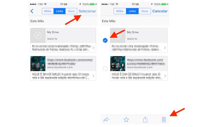 Selecionando links recebidos para deletar no WhatsApp para iPhone (Foto: Reprodução/Marvin Costa)