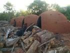 Polícia ambiental fecha carvoaria ilegal em fazenda em Três Lagoas