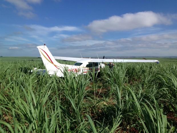 Avião carregado com a droga pousou no canavial entre Igaraçu e São Manuel (Foto: André Godinho/ TV Tem Bauru)