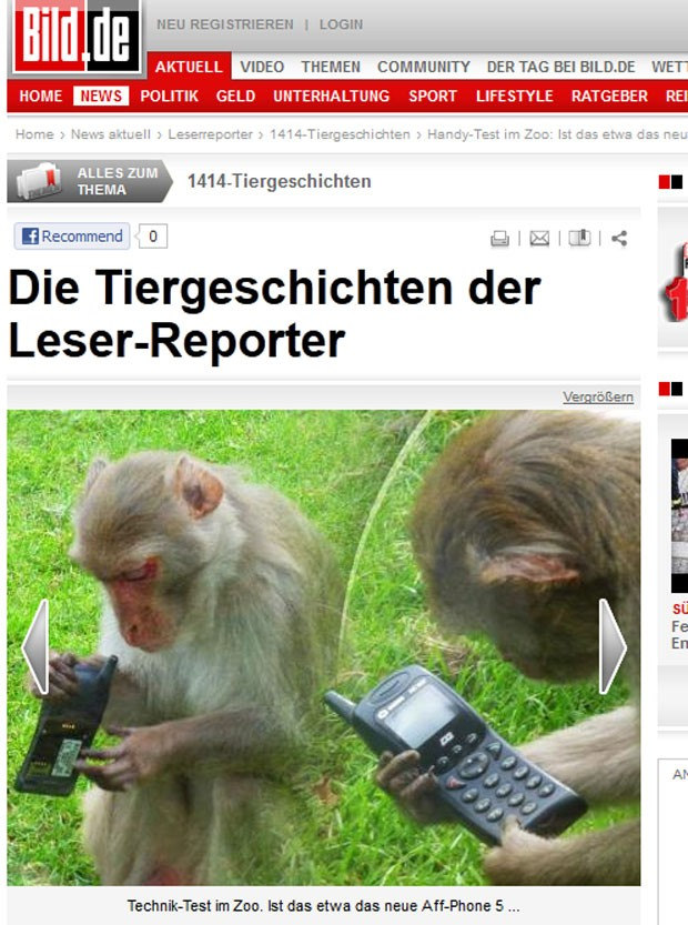 Macaco foi flagrado mexendo em celular no zoológico de Heidelberg. (Foto: Reprodução/Bild)