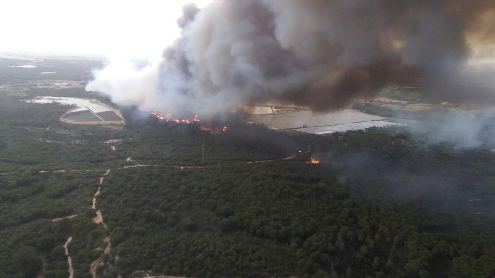 Incêndio em reserva florestal na Espanha ameaça o Parque Nacional Doñana (Foto: ASSOCIATED PRESS)