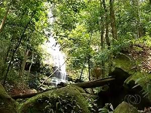 Cachoeiras de Taquaruçu atraem turistas e chamam a atenção pela beleza (Foto: Reprodução/TV Anhanguera)