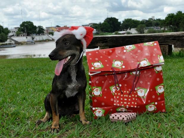 Uma das fotos foi em alusão ao Natal (Foto: Moisés Bandeira/ ONG)
