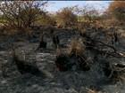Local onde jovens de 19 anos foram achadas mortas é incendiado em PE