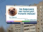 Gato lidera intenções de voto em cidade da Sibéria