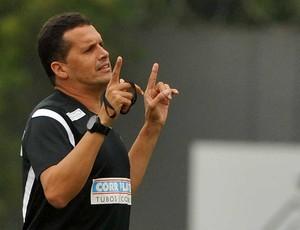 Claudinei Oliveira, treinador do Santos (Foto: Ivan Storti/Divulgação Santos FC)