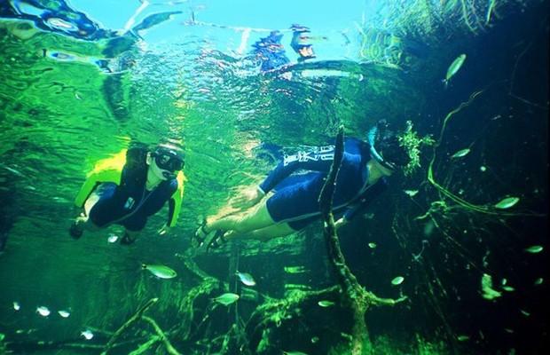 Uma das principais atividades turísticas de Bonito (MS), o mergulho, depende da boa visibilidade das águas (Foto: Reprodução/Facebook)