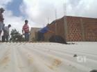 Vídeo mostra resgate de vaca que subiu no telhado de uma casa no PR