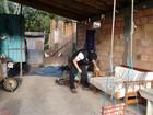 Operação combate tráfico de drogas perto de escolas em 16 cidades do RS