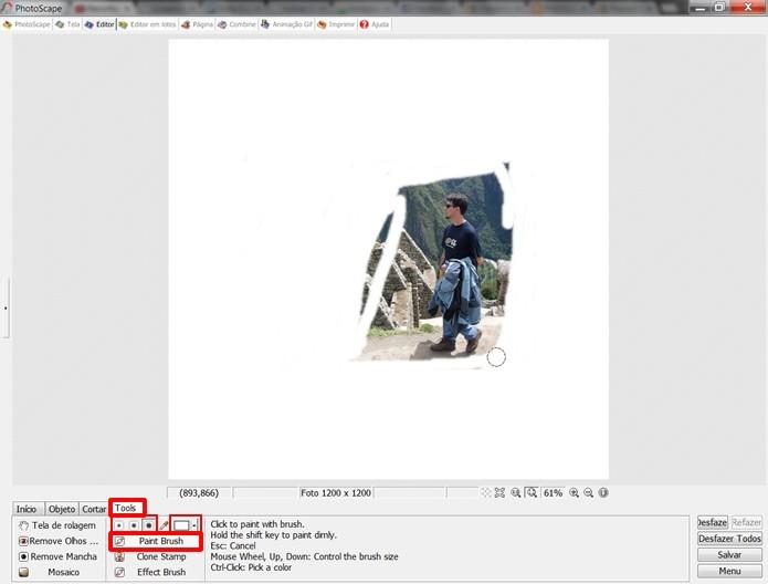 """Pinte de branco o fundo que compõe a figura que você deseja destacar utilizando o recurso """"Paint Brush"""" (Foto: Reprodução/Daniel Ribeiro)"""