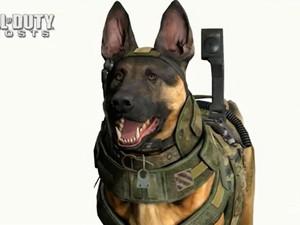 Imagem do cachorro do novo Call of Duty: Ghosts, game para Xbox One, novo videogame da Microsoft, lançado nesta terça-feira (21) (Foto: Reprodução)