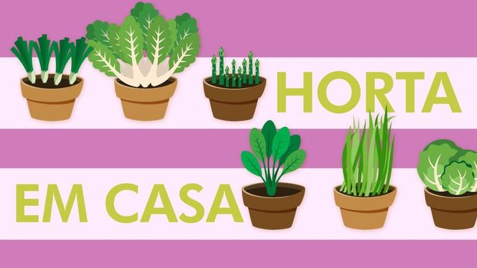 Aumente o contato com natureza e faça economia com a horta caseira (Foto: TV Sergipe)