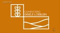 Gisele Loeblein fala sobre obra de dragagem no Porto de Rio Grande