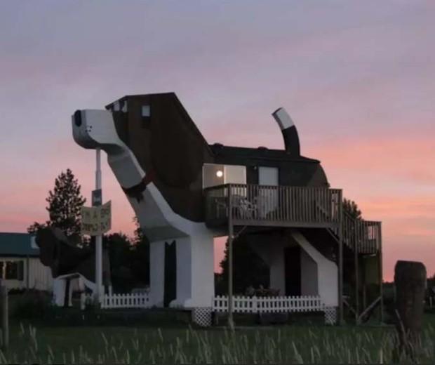 A Casa do Cachorro (Foto: Reprodução Airbnb)