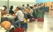 Famílias da região relatam dificuldades para conseguir emprego (Reprodução/EPTV)