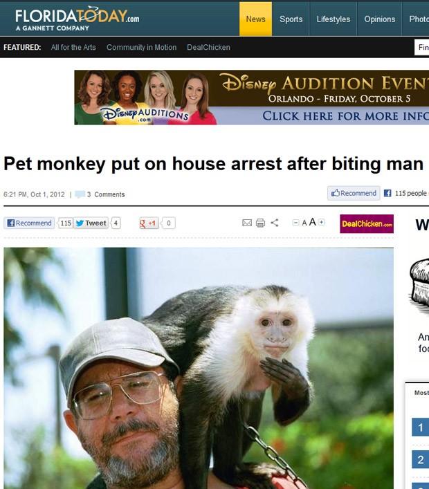 Macaco teria ficado assustado com carro e mordeu pedestre na canela. (Foto: Reprodução/Florida Today)
