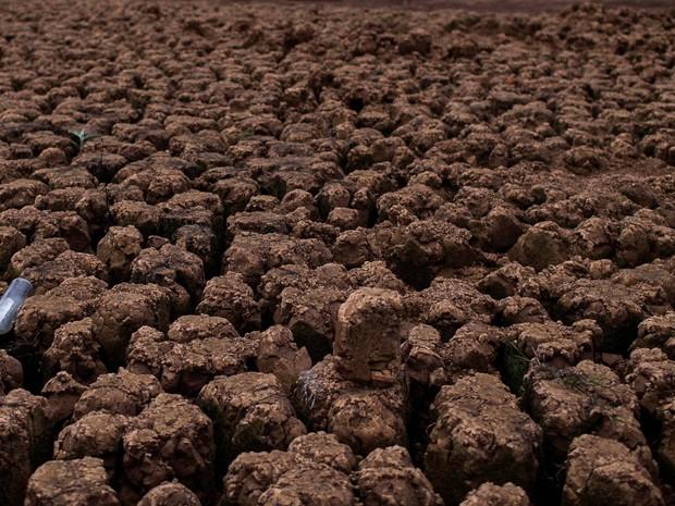 Uma garrafa é vista em meio a seca na reserva de Jaquari em Vargem, no estado de São Paulo, em 28 de janeiro de 2015 (Foto: Roosevelt Cassio/Reuters)