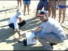 Filhotes de tartaruga são soltos no litoral de São João da Barra, no RJ