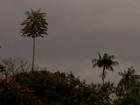 Terça-feira começa chuva, nuvens e dia parece noite em Campo Grande