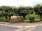Cidades da região de Araçatuba não registram homicídios há 14 anos