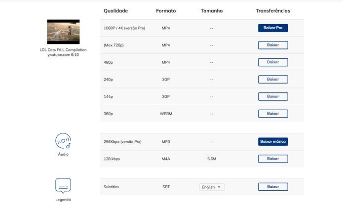 No keepVid, escolha em qual formato você deseja baixar o vídeo do YouTube (Foto: Reprodução)