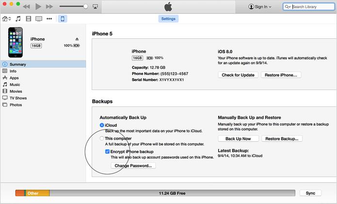 Faça um backup dos dados do aplicativo no iCloud ou iTunes (Foto: Reprodução/Apple)