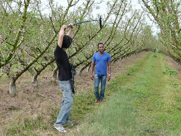 Globo Ciência: combate às pragas na agricultura (Foto: Divulgação)
