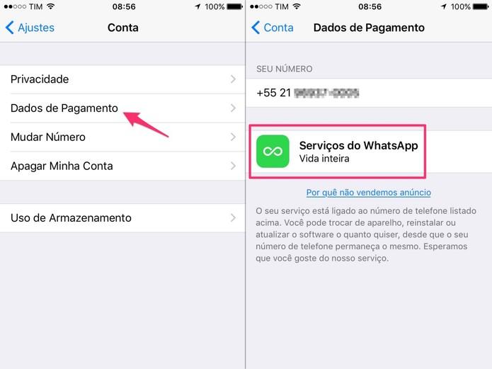 Selecione a opção Dados de Pagamento e verifique o status do seu serviço (Foto: Reprodução/Lucas Mendes)
