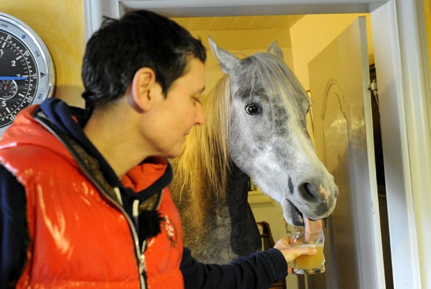 'Nasar' aproveita para beber suco direto do copo em Holt, na Alemanha (Foto: Carsten Rehder, DPA/AFP)