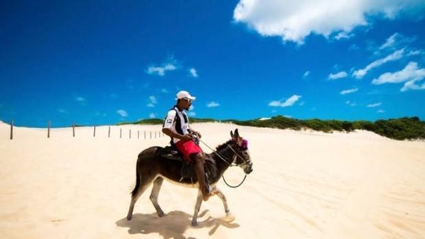 Uso de jumento na praia de Genipabu, no Rio Grande do Norte; OAB local sugere emprego do animal em projetos turísticos (Foto: Buda Mendes/Getty Images)